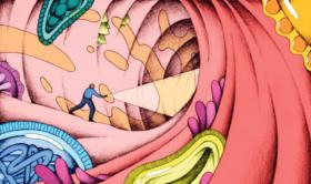 saaie vagina